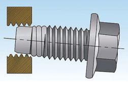 MATthread screw