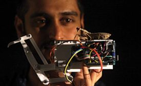 New 3D Vision System Is Inspired by Insects
